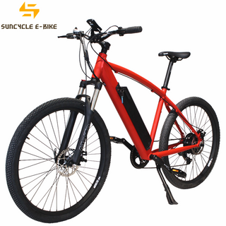 Al Alloy Frame Electric Bike for Sale