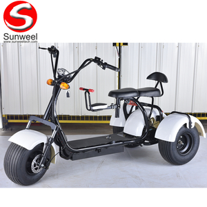 Fat Tire 3 Wheel Electric Scooter