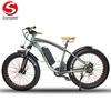 Factory Cheap Price Vintage Electric Fat Bike 500W Motor Bicycle
