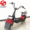 Fashionable City Coco 2 Wheel Electric Scooter for Adult Electric Motorcycle