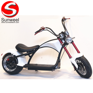 Citycoco Harley 2 Wheel Fat Tire Electric Scooter with EEC