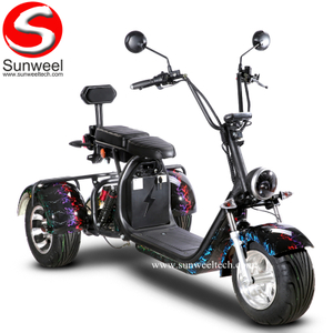 Suncycle Electric Scooter 3 Wheel Adult Electric Motorcycle for Sale